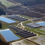 CAFO contracted by Smithfield Foods Inc., Duplin County, North Carolina. All rights reserved by Socially Responsible Agricultural Project.